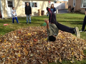 Leaf Raking Activity